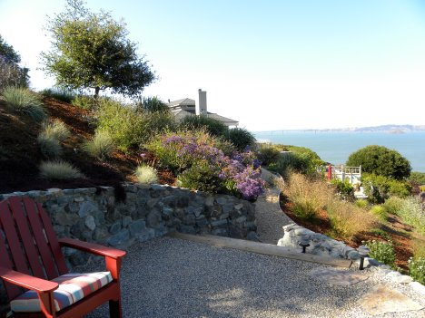 Decomposed Granite patio with Lots of natives with view