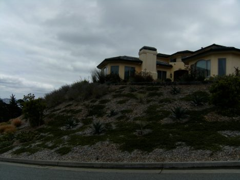 See how large and steep is this hillside, yet poor drainage