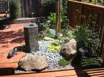 Ceanothus 'Diamond Heights' is right of the fountain. It has now covered the pebbles
