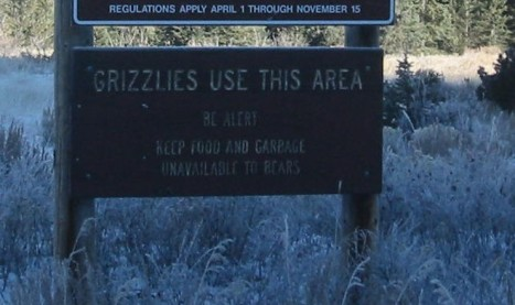 grizzly warning sign in the greater yellowstone area