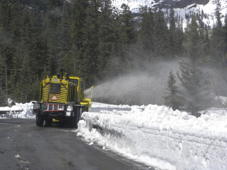 Following the Plow to Yellowstone
