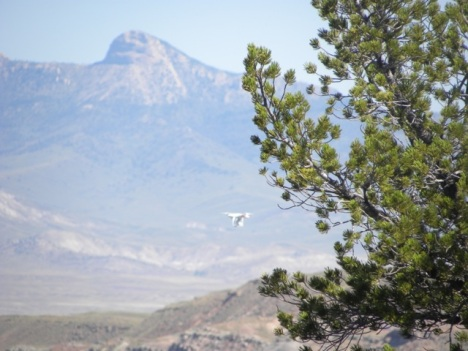 Drone over nest with Heart Mountain in background