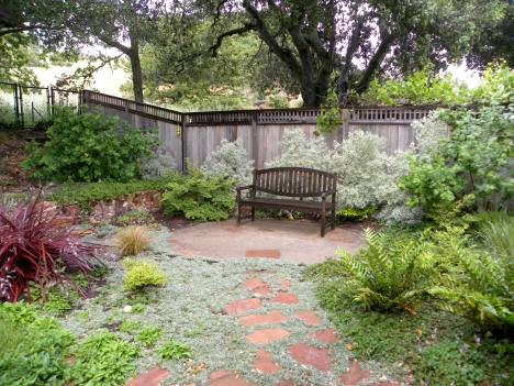 Decomposed granite small patio with pavers; Pavers set in Dymondia groundcover